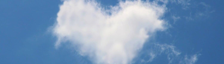SAP Business One Cloud Übersicht für Startup