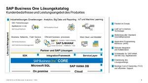 SAP Business One - Schematischer Aufbau